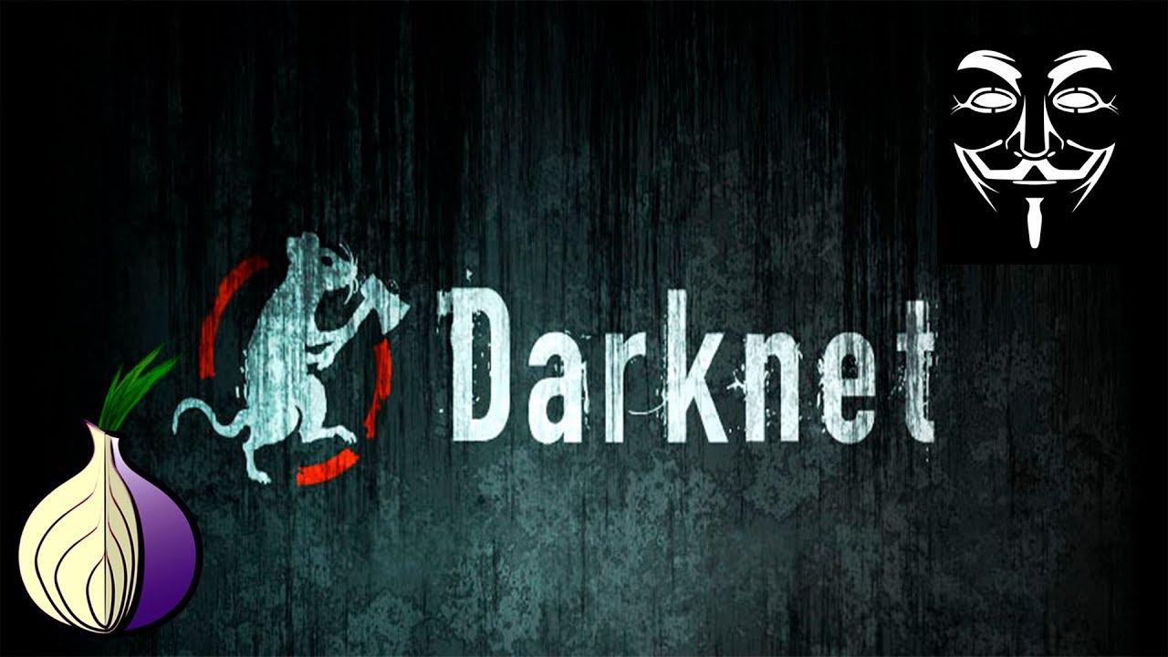 Darknet archives тор браузер нет доступа к профилю попасть на гидру