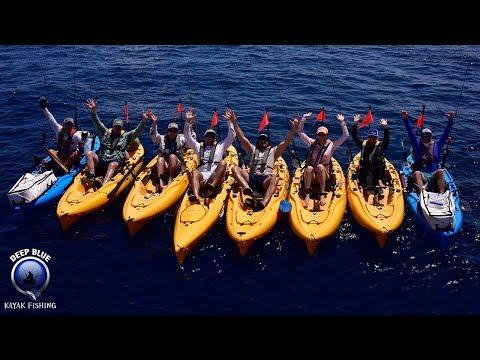 KING Mackerel Frenzy! DEEP BLUE Kayak Fishing