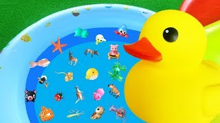 Learn Animal Names with Yellow Duck - Sea & Wild Animals | Toys for Kids | Lum Sum Kids