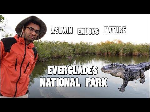 Everglades National Park - Ashwin Enjoys Nature