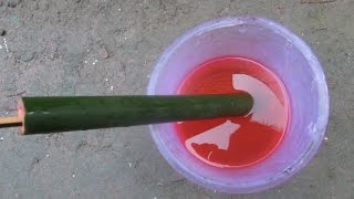 How to make Pichkari at home with Bamboo
