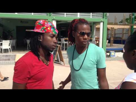 Lizard found in St Maarten Free World Boss Vybes kartel Sxm HUFV