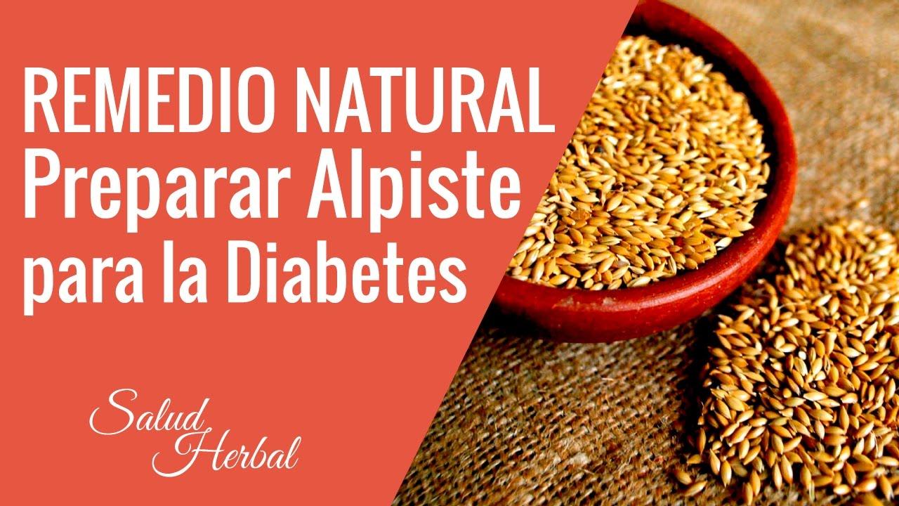 alpiste para diabetes como usar
