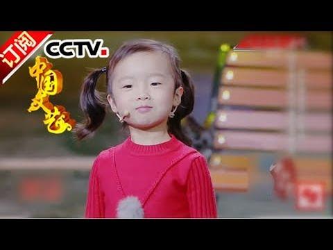 《中国文艺》 20171108 欢乐中国人集锦 | CCTV-4