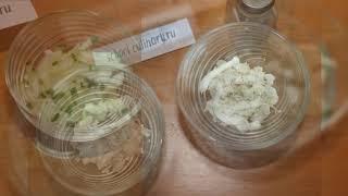 Порционный салат в креманках - school-culinary.ru