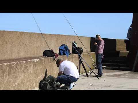 Gone Fishing :) Berwick Upon Tweed Part 2