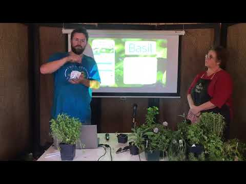 How to Grow & Cook w/10 Different Herbs! (w/Lori Coats of My Raggedy Herbs) (recorded workshop)
