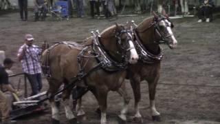 SAINT AGAPIT tire de chevaux lourd