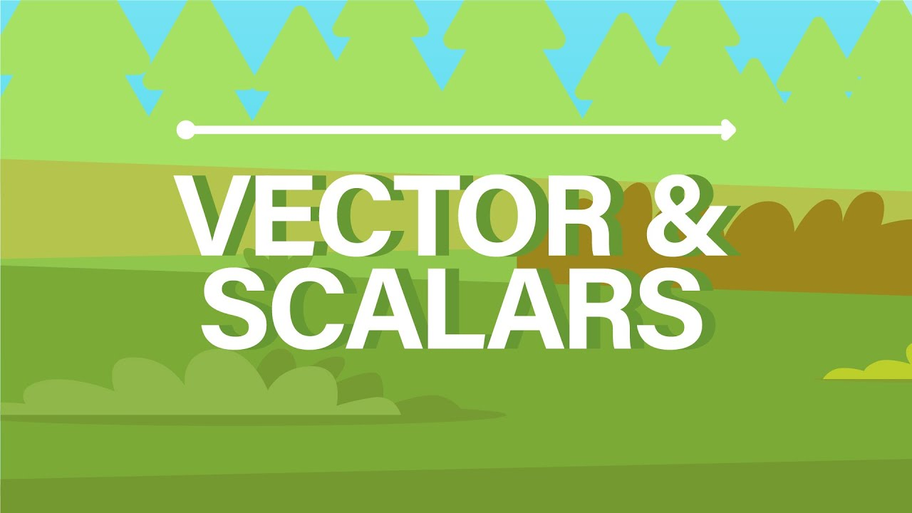 Download What are Vector and Scalar Quantities?