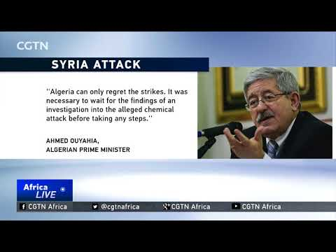 Algeria criticizes U.S.-led air strikes in Syria
