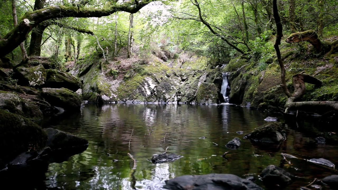 Image result for tranquil water stream animated gif
