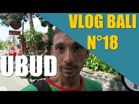 UBUD: visite complète du centre ville Vlog Bali 18
