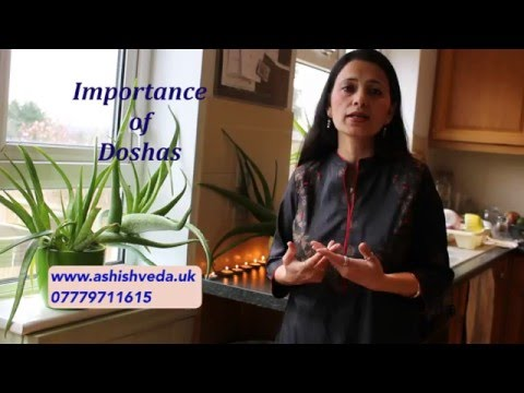 Importance of dosha