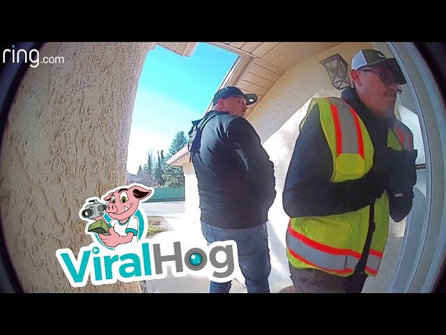Thieves Caught and Confronted by Doorbell Camera || ViralHog