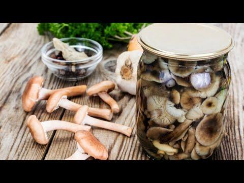 Сногшибательный рецепт маринованных опят на зиму!!! Honey Mushrooms Pickled For The Winter !!!