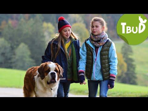 Falscher Hase (Folge 69)   Tiere bis unters Dach   SWR Kindernetz