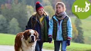 Falscher Hase (Folge 69) | Tiere bis unters Dach | SWR Kindernetz