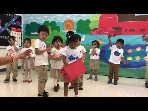 Preschool Spring Program 2019| Stratford School| Santa Clara