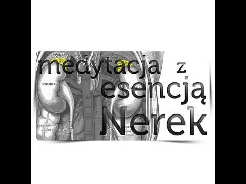 Medytacja Z Esencją Nerek - Wspierająca Odporność, Asertywność I Uwalnianie Się Od Lęku