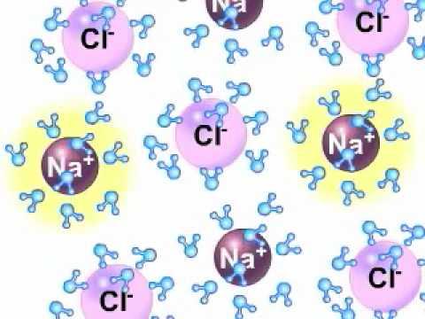 ذوبان كلوريد الصوديوم في الماء 2 Youtube
