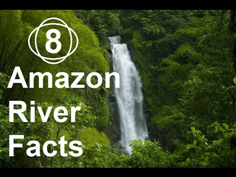 8 Facts About Amazon River That will Blow Your Mind.