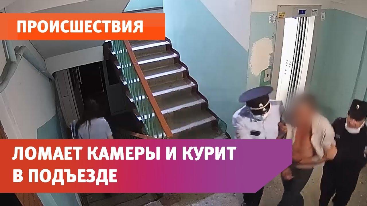 Уфимцы жалуются на соседа. Он испражняется в лифте, курит в подъезде и ломает камеры