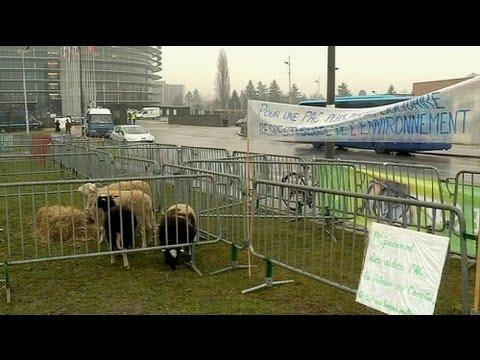 Small farmers protest over 'unfair' EU farm subsidies