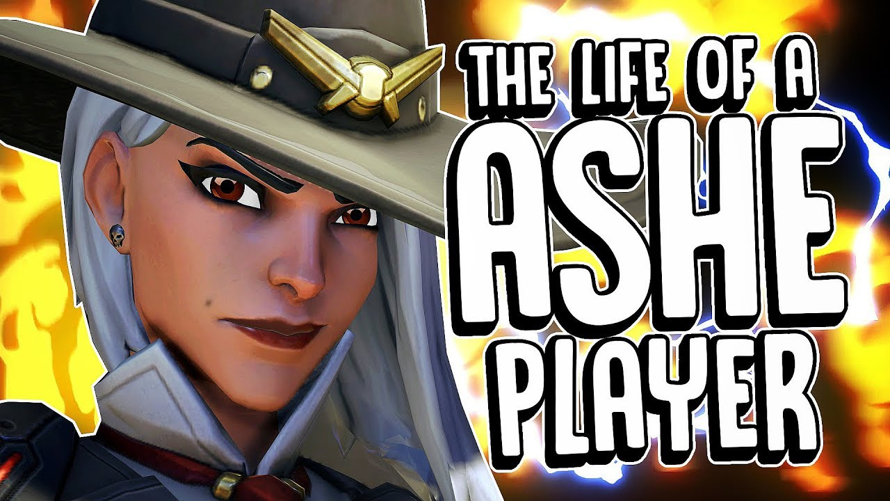 Download The life of a ASHE player