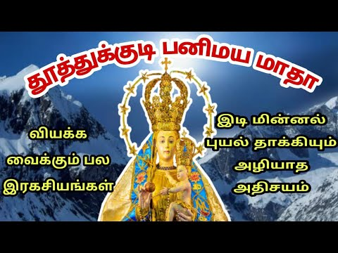 தூத்துக்குடி புனித பனிமய மாதா  Our Lady Of Snows - Tuticorin   Panimaya madha Arul Thedal Fr Manuvel