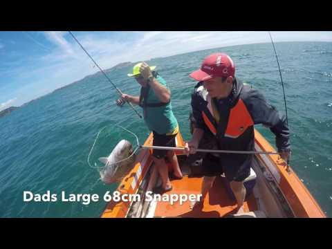Bay Of Islands Fishing