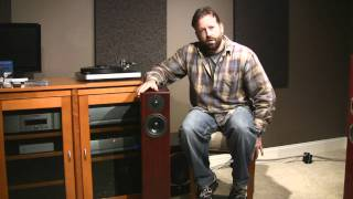 Totem Acoustic Hawk Speaker Review