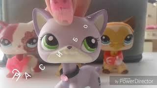 Lps Клип на 50 котят! ( читать описание )
