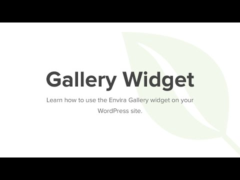 How to Use the Envira Gallery Widget
