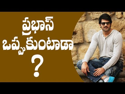 Will Prabhas agree to do it ? || #Prabhas || #Baahubali2 actor Prabhas