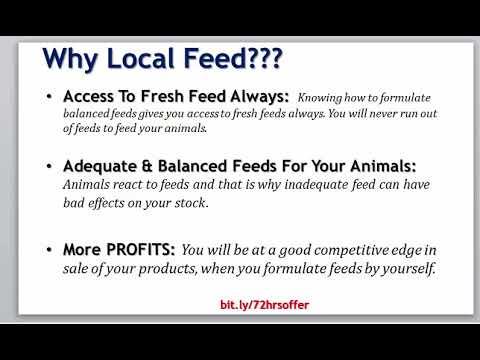 Catfish Feed Formulation: How To Maximize Your Profit Using Catfish Local Feed Formula
