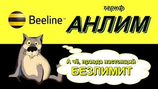 Обзор АНЛИМ от Билайн.  Опять минусы. Халява 300 рублей на мобильник.