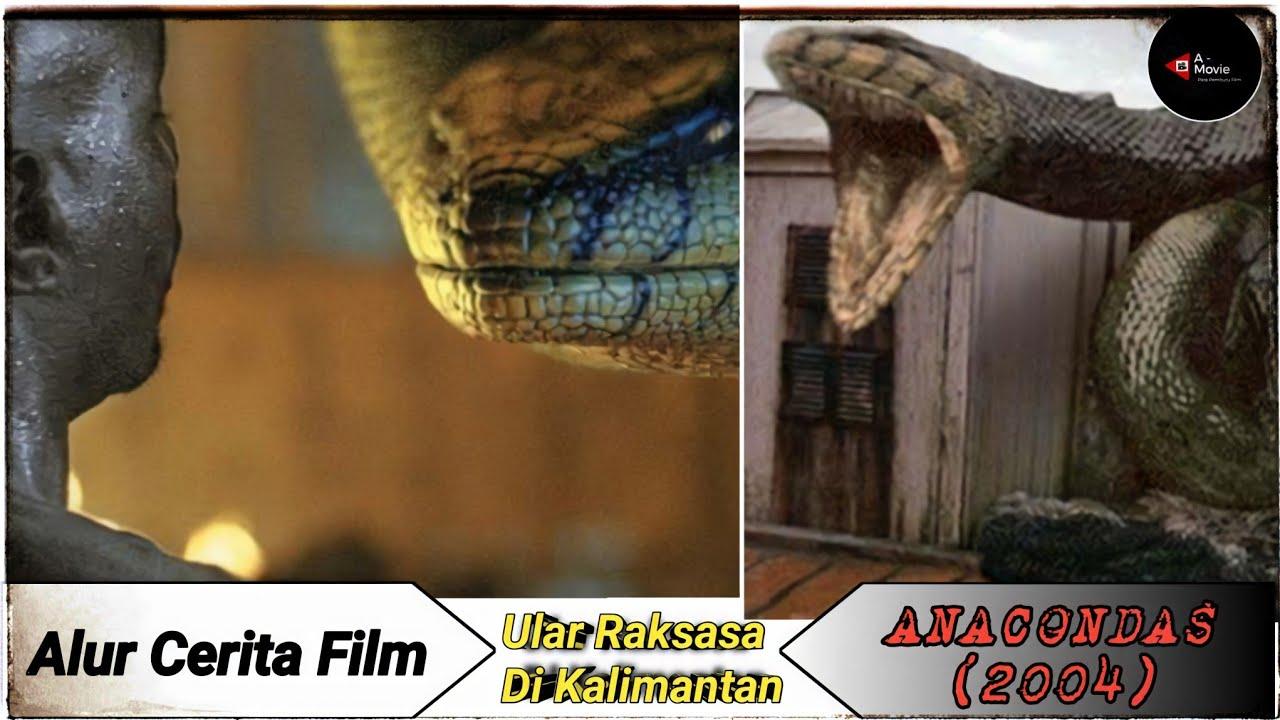 "Download MISTERI ULAR ANACONDA RAKSASA DI KALIMANTAN | ALUR CERITA FILM ""ANACONDAS"" (2004)"