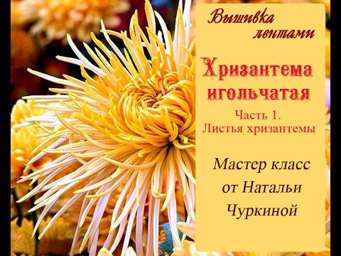 Мастер-класс Хризантема игольчатая. от Натальи Чуркиной. Часть 1. Вырезаем листья