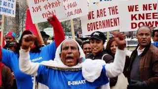 Demonstration against United Nations SC sanction on Eritrea