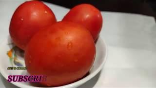 HOTAL স্পেশাল পোড়া টমেটো ভর্তা  /hotel style Tomato vorta