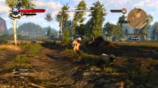 The Witcher 3: How to Kill the Griffin Tutorial/Let