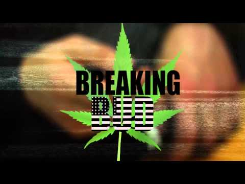 Breaking Bud Family Comercial