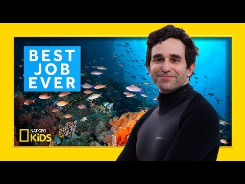 Marine Biologist: David Gruber | Best Job Ever