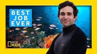Marine Biologist: David Gruber | Best Job Ever