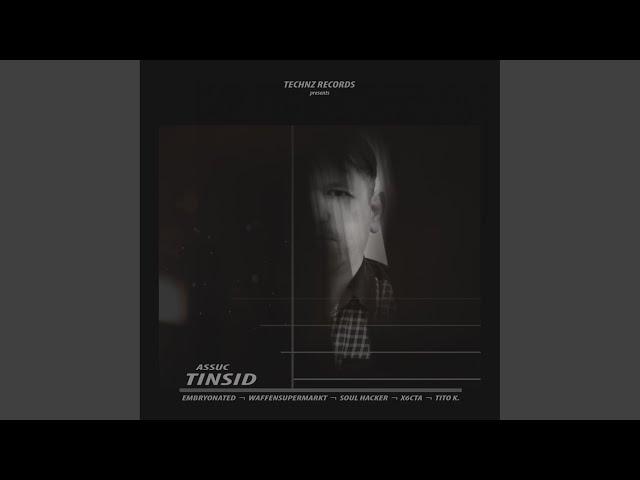 Tinsid (Waffensupermarkt Remix)