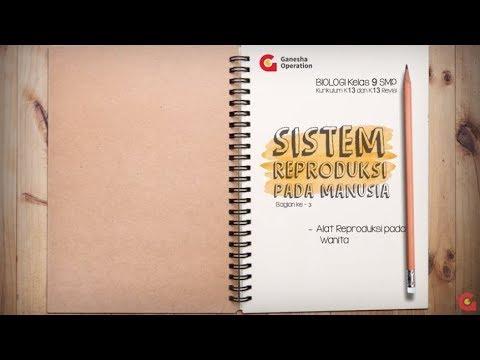 Biologi 9 SMP - Sistem Reproduksi Manusia Bagian 3