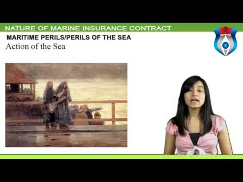 NATURE OF MARINE INSURANCE CONTRACT