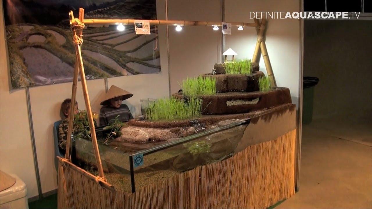 Aquascaping   Aquarium Ideas From ZooBotanica 2013 Pt.7   YouTube