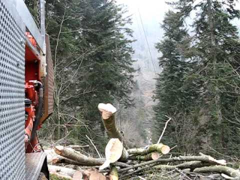 Cable mât, exploitation forestière. Apremont (Ain)