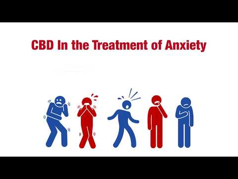 CBD In the Treatment of Anxiety - CBD Wellness Guide